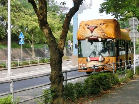 送迎バス.jpg